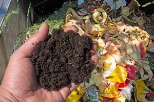 kompostherstellung aus küchenabfall Bioabfall und Speiseresten