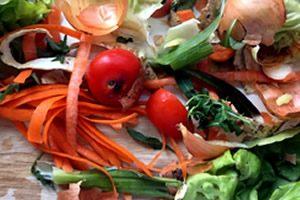 Speiseresteentsorgung - Bioabfall und Küchenabfall entsorgen